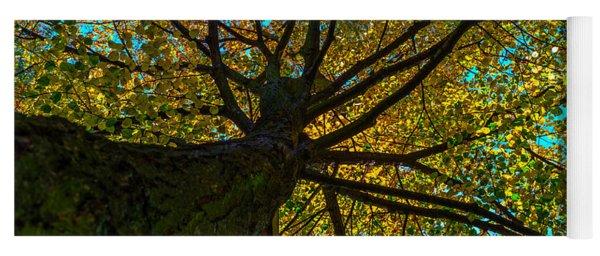Under The Tree S Skirt Yoga Mat