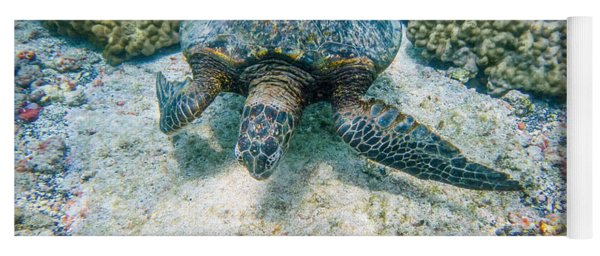 Swimming Turtle Yoga Mat