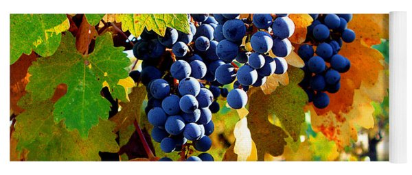 Vineyard 2 Yoga Mat