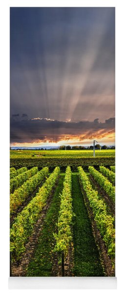 Vineyard At Sunset Yoga Mat