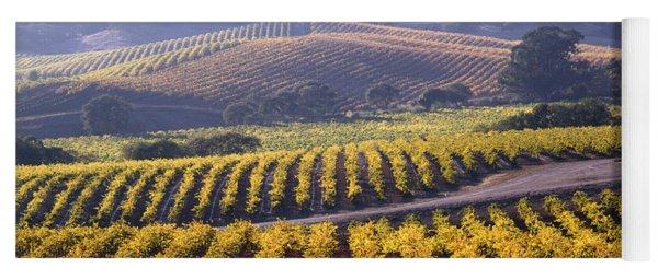 6b6386-vineyard In Autumn Yoga Mat