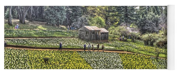 Visitors On Daffodil Hill Yoga Mat