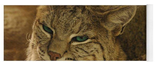 Wary Bobcat Yoga Mat