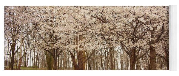 Washington Dc Cherry Blossoms Yoga Mat