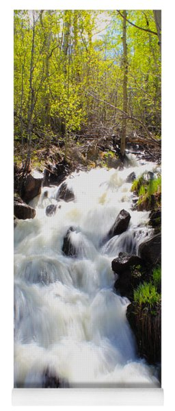 Waterfall By The Aspens Yoga Mat