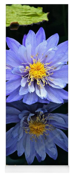 Waterlily And Reflection Yoga Mat