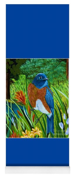 Western Bluebird Yoga Mat