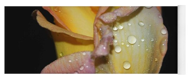 Yoga Mat featuring the photograph Wet And Wonderful by Judy Hall-Folde