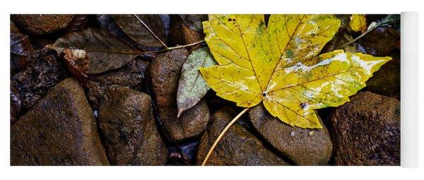 Wet Autumn Leaf On Stones Yoga Mat