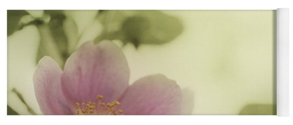 Where The Wild Roses Grow Yoga Mat