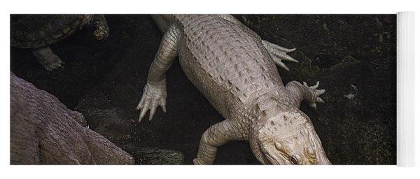 White Alligator Yoga Mat