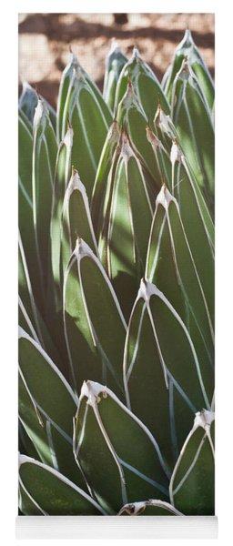 White Edged Cactus Stems Yoga Mat