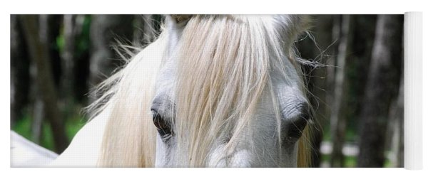 Yoga Mat featuring the photograph White Horse Close Up by Jocelyn Friis