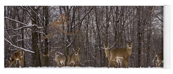 White Tailed Deer Yoga Mat