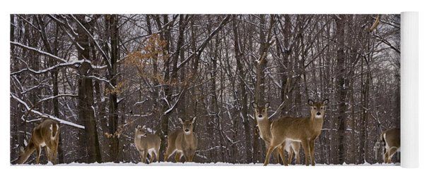 White Tailed Deer Yoga Mat