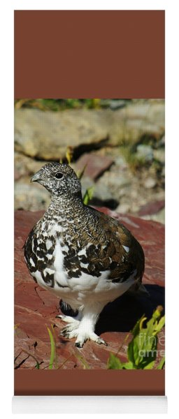 White-tailed Ptarmigan Yoga Mat