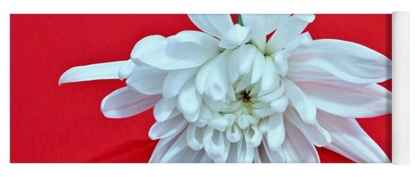 White Flower On Bright Red Background Yoga Mat