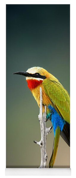 Whitefronted Bee-eater Yoga Mat