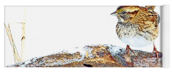 Whitethroated Sparrow On Snow-dusted Tree Branch Digital Art Yoga Mat