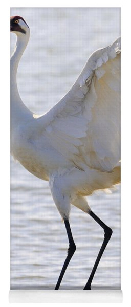 Whooping Crane - Whooping It Up Yoga Mat