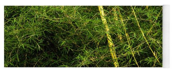 Wild Bamboo Yoga Mat
