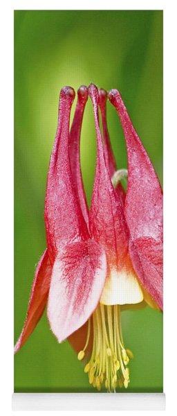 Wild Columbine Flower Yoga Mat