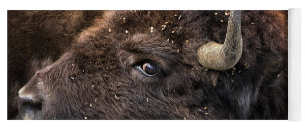 Wild Eye - Bison - Yellowstone Yoga Mat
