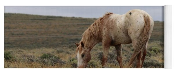 Wild Horse Yoga Mat