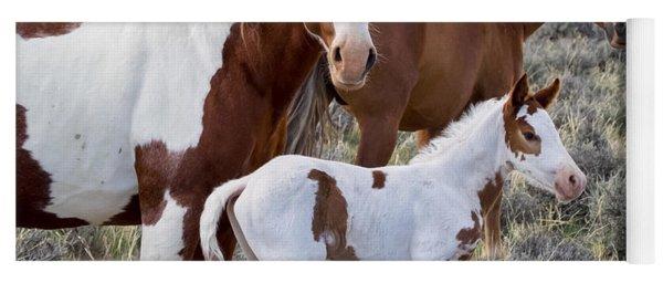 Wild Horse Family Portrait Yoga Mat