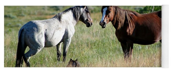Wild Horses In Medora Yoga Mat