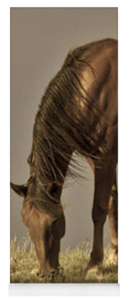Wild Mustangs Of New Mexico 20 Yoga Mat