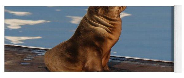 Wild Pup Sun Bathing - 2 Yoga Mat