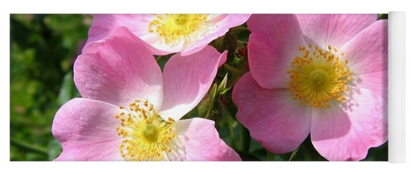 Wild Roses 1 Yoga Mat
