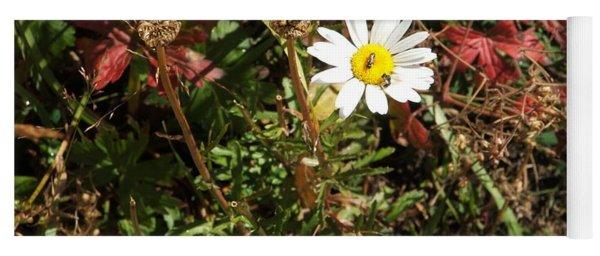 Wildflower @ Kit Carson Yoga Mat