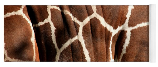 Wildlife Patterns  Yoga Mat