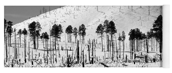 Winter After Fire-san Francisco Peaks Yoga Mat