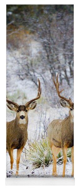 Winter Bucks Yoga Mat