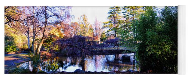 Winter In Beacon Hill Park Victoria Bc Yoga Mat