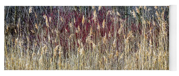 Winter Reeds And Forest Yoga Mat