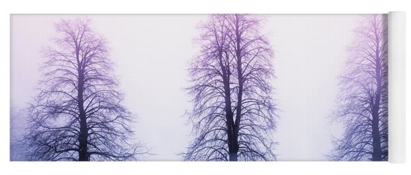 Winter Trees In Fog At Sunrise Yoga Mat