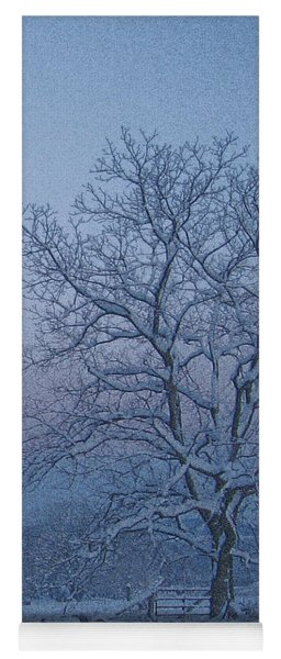 Winter Trees On West Michigan Farm At Sunrise Yoga Mat