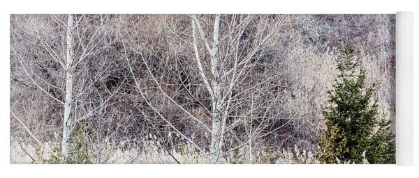 Winter Woodland With Subdued Colors Yoga Mat