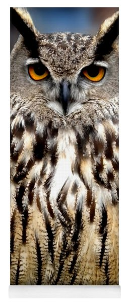 Yoga Mat featuring the photograph Wise Forest Mountain Owl Spain by Colette V Hera  Guggenheim