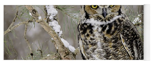 Wise Old Great Horned Owl Yoga Mat
