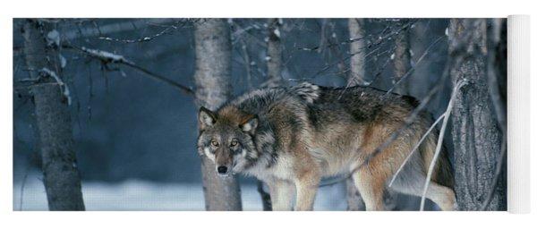 Wolf Winter Yoga Mat