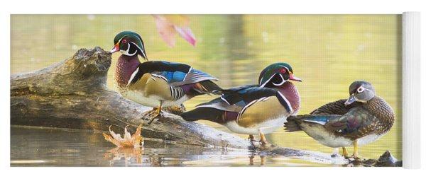 Wood-ducks Panorama Yoga Mat