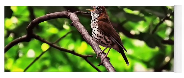 Wood Thrush Singing Yoga Mat