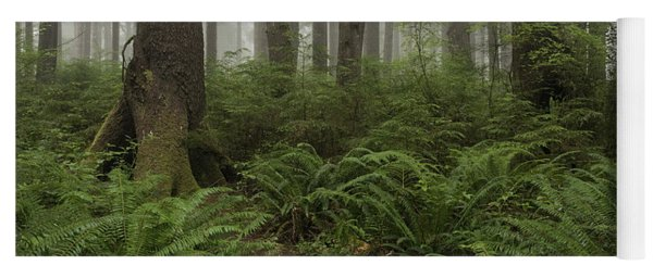Woods Trail Yoga Mat