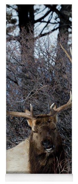 Wyoming Elk Yoga Mat