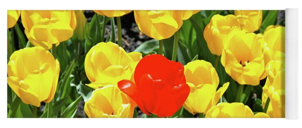 Yellow And One Red Tulip Yoga Mat